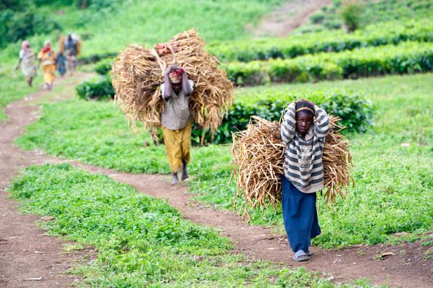 travail-enfants-afrique